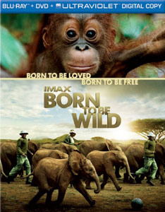 borntobewild