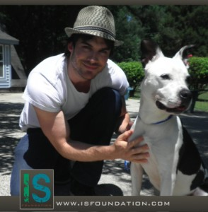 Ian-Somerhalder-with-Dog-WebRez