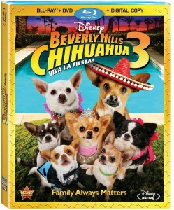 BEVERLYHILLSCHIHUAHUA_3BlurayCombo