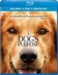 """Blu-ray Review """"A Dog's Purpose"""""""