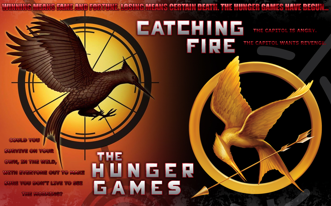 FREE Hunger Games: Catching Fi...